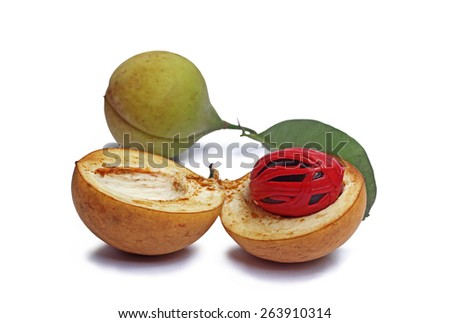 Close up of nutmeg seeds isolated in white background. Nutmeg is the only spice delivering two distinct flavors. Grows in tropical regions. Genus is Myristica. - stock photo