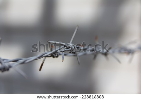 close up of old barbed wire - stock photo