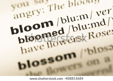 Close up of old English dictionary page with word bloom