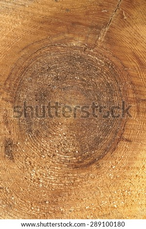 Close-up Of Old Pine Tree Rough Cross Section Vertical Background Texture With Many Growth Rings Circular Pattern - stock photo