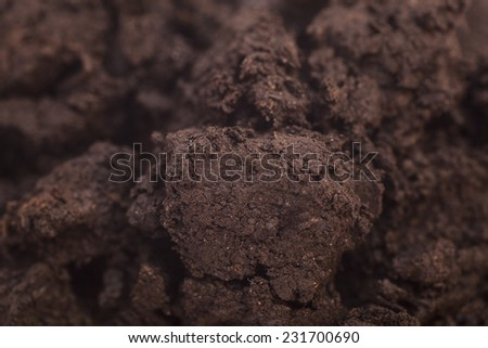 Close-up of organic soil background - stock photo