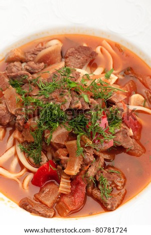 Close up of oriental uzbek soup lagman decorated with greens - stock photo