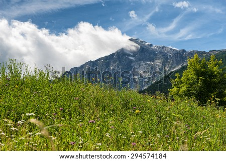 Close up of overgrown grassy meadow with rocky mountain vista backdrop beneath blue sky and white cloud - stock photo
