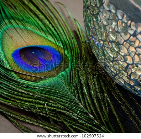 Close up of peacock feather and mosaic candle holder. - stock photo