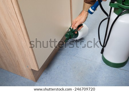 Close-up Of Pest Control Worker Hand Holding Sprayer For Spraying Pesticides On Cabinet - stock photo