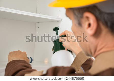 Close-up Of Pest Control Worker Spraying Pesticides In The Light Of Torch On Shelf - stock photo