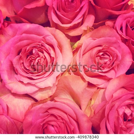 Close up of pink roses bouquet