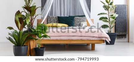 close up of plants next to wooden canopy bed with yellow and green pillow in - Yellow Canopy Interior