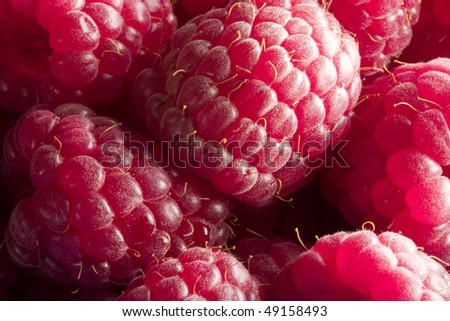 Close up of raspberries in blue container with blurry background - stock photo