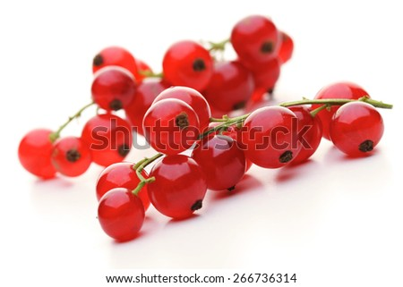 Close - up of red currants - stock photo