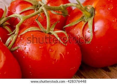 Close up of red tomatoes on the vine with water drops - stock photo