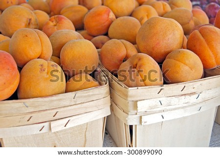 close up of ripe apricots in square wooden produce boxes at the farmer's market - stock photo