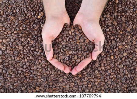 Close up of roasted coffee beans in human hands - stock photo