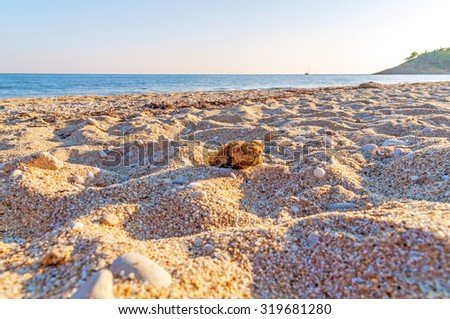 Close up of sand with blurred sea background - stock photo
