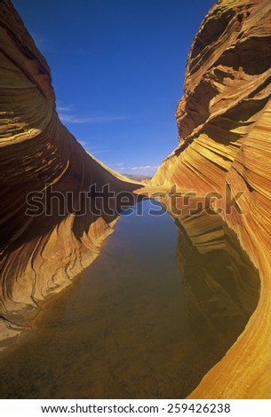 Close up of sandstone stripes, 'The Wave' on Kenab Coyote Butte, BLM, Slot Canyon, UT - stock photo