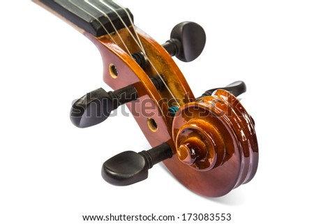 Close up of scroll and pegbox of violin, isolated on white background with clipping path