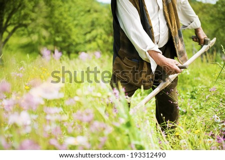 Close up of senior farmer using scythe to mow the lawn traditionally - stock photo