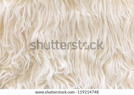 close up of sheepskin texture background - stock photo