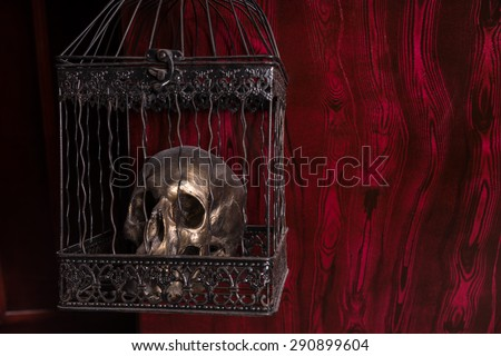 Close Up of Shiny Gothic Skull in Ornate Metal Cage in front of Red Background with Copy Space - stock photo