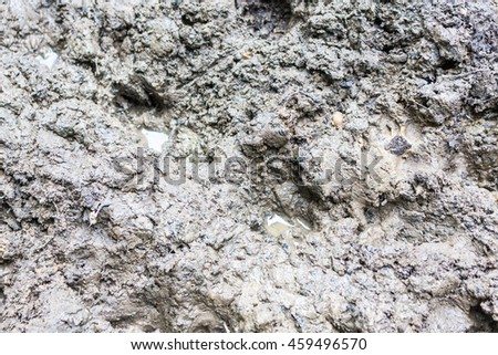 Close-up of soft wet mud - stock photo