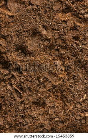 Close up of soil - can be used as background