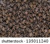 close up of star anise food background - stock photo