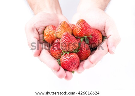 Close up of strawberry in man's hands filled with fresh, ripe, red, wet, organic strawberries in summer on white background - stock photo