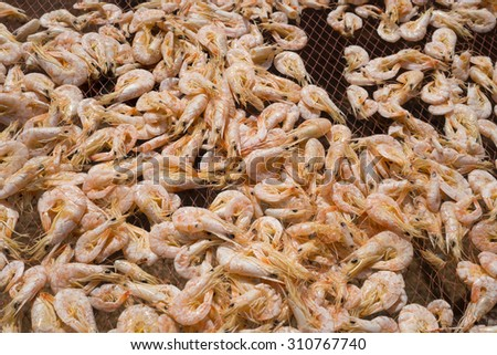 Close up of sun rdied seafood, traditional preserved food:  Dried Shrimps for making Asian cuisines, Songkhla, Thailand - stock photo