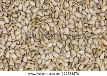 close up of sunflower seeds in bulk