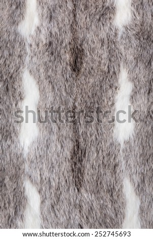 Close-up of synthetic grey fur