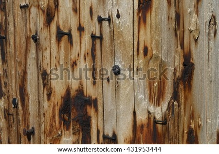 Close up of telephone pole wood grain with nails - stock photo