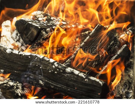 close up of the aflame wood in bonfire.  - stock photo