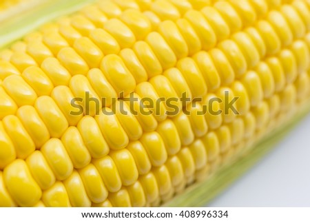 close-up of the corn with the white background
