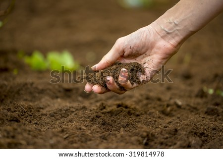 Close up of the hand of a woman holding a handful of rich fertile soil that has been newly dug over or tilled in a concept of conservation of nature and agriculture or gardening. - stock photo