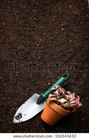 Close-up of the organic soil, spade and flower in pot - stock photo
