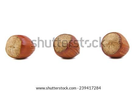 Close-up of three hazelnuts on white background - stock photo