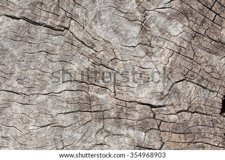 close up of timber to use as background or texture