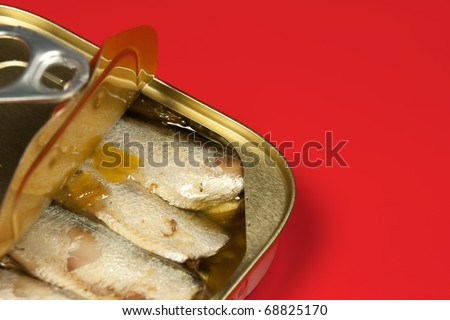 Close-up of Tinned sardines on red background - stock photo