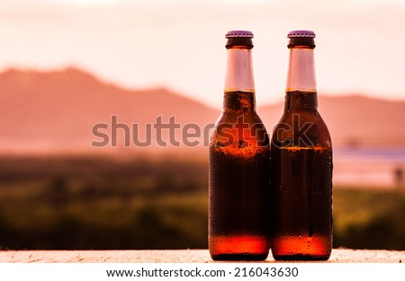 Close up of two beer bottles. mountain background - stock photo
