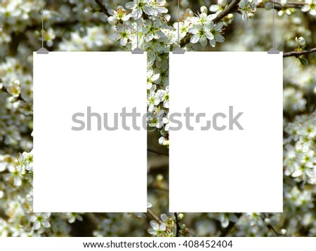 Close-up of two blank frames hanged by clips against white blooms background - stock photo