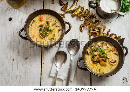 Close-up of two bronze bowl of mushroom soup - stock photo