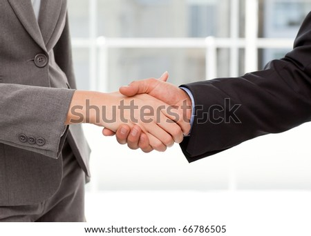 Close up of two businesspeople shaking their hands after a meeting