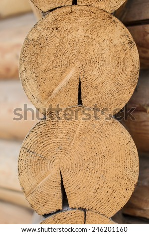 close up of two cut wood logs - stock photo