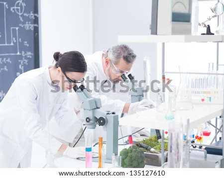 close-up of two scientists in  a chemistry lab analyzing under microscope on a lab table around lab tools - stock photo