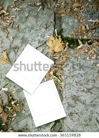 Close-up of two square instant photo frames on gray stone wall and dry brown leaves background