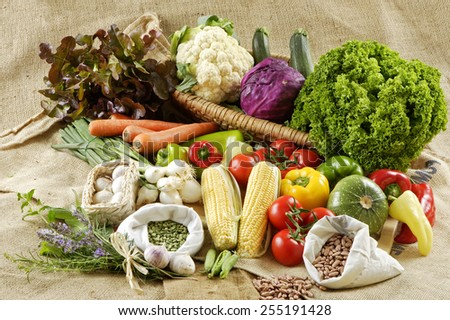 Close up of various colorful raw vegetables - stock photo