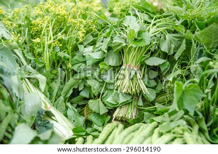 Close up of various raw green vegetables - stock photo