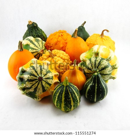 Close-up of vivid autumn gourds set against white background - stock photo