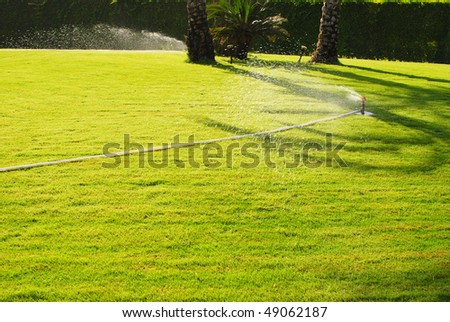 close up of water sprinkler - stock photo