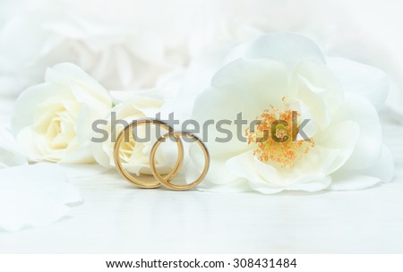 Close-up of wedding rings on background of roses/Wedding Rings/Wedding Rings - stock photo